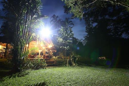 Tree House Khaosok Near The Khao Sok National Park - TH - Szállás a természetben