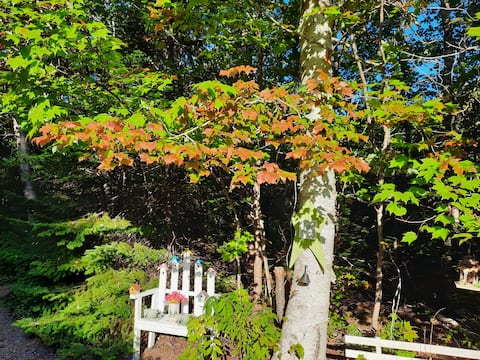 Gowdas Cottage at Fall discounts