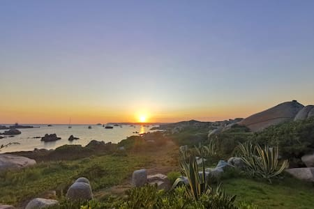 Isola di Cavallo, Ile de Cavallo. Busto