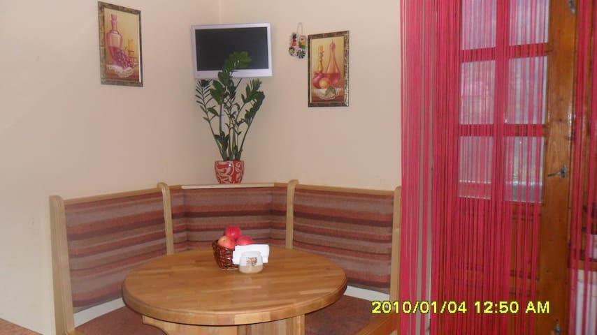 Квартира в Карпатах  - Mizhhiria - Appartement