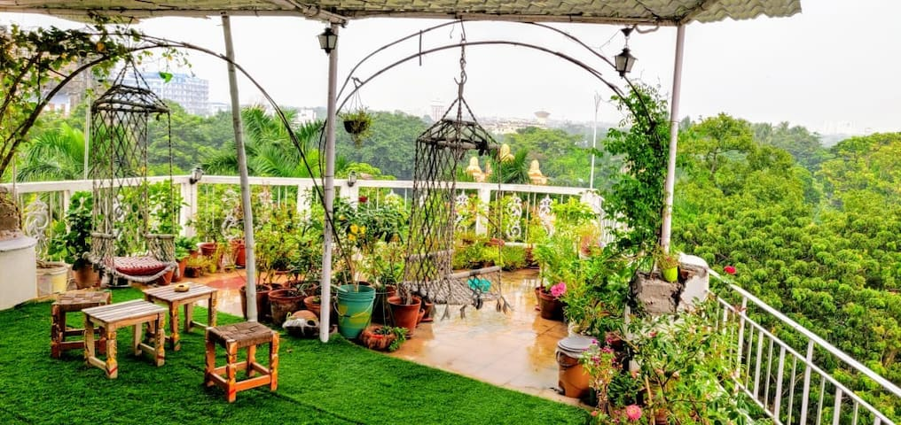Owl's Nest: Cabin in a Rooftop garden
