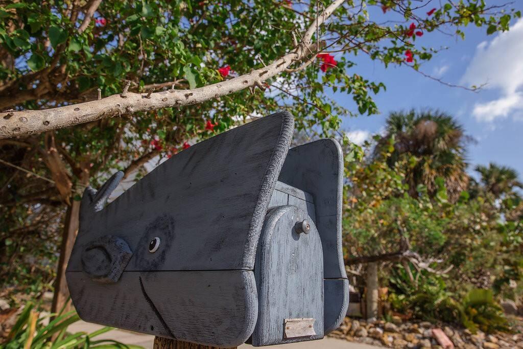 Our whalebox