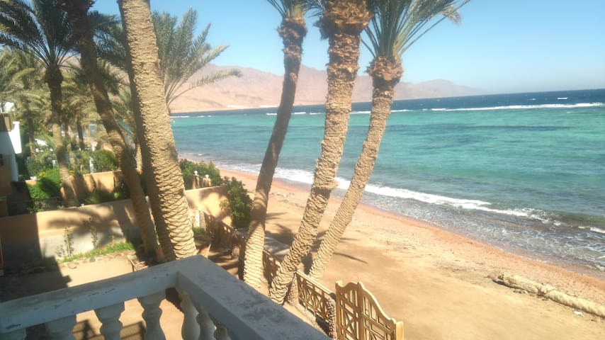 'Jazz' Beachfront Apartment - Dahab - Apartament