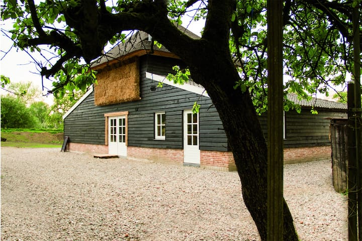 Rustic B&B surrounded by orchards