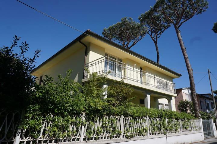 Tuscany Lido di Camaiore - Camaiore - Apartment