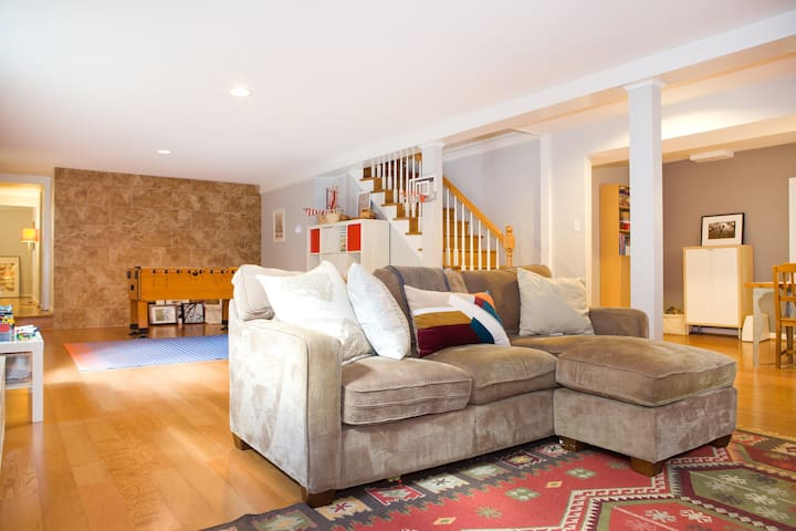 Bright and Cozy 1 bdrm Apartment - Silver Spring - Apartment