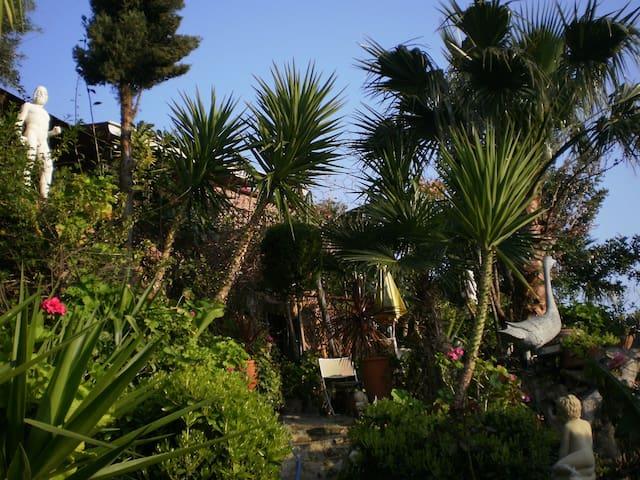400 yo villa lower section, lush garden and pool