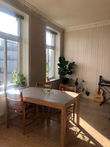 Luminous apartment with green balcony at Tøyen!