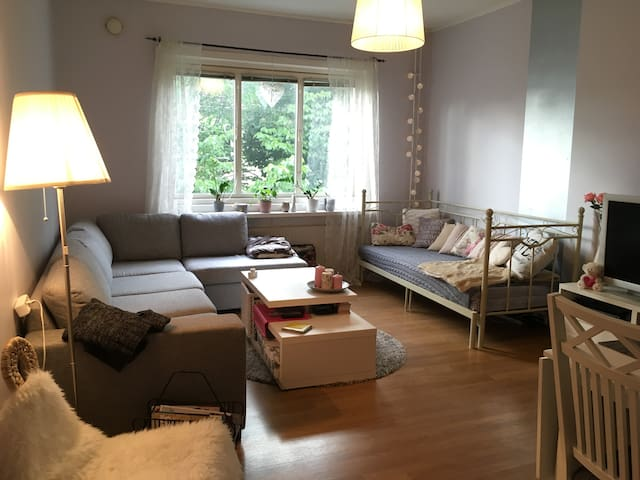 Feel like home in my cozy livingroom - Göteborg - Appartement