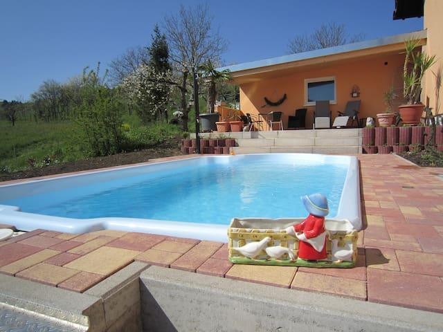 Schwimmen&Wohnen in den Weinbergen - Östringen - Huis