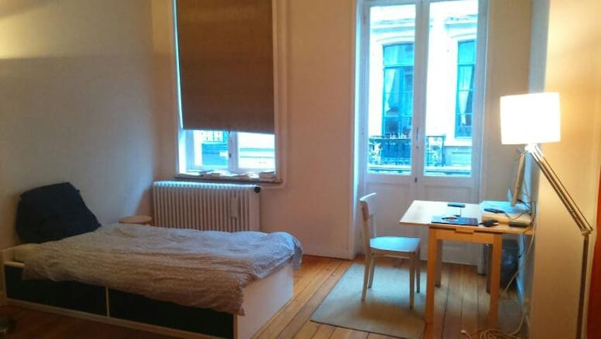 Large bright room in the center of Brussels - Ixelles - Gjestehus