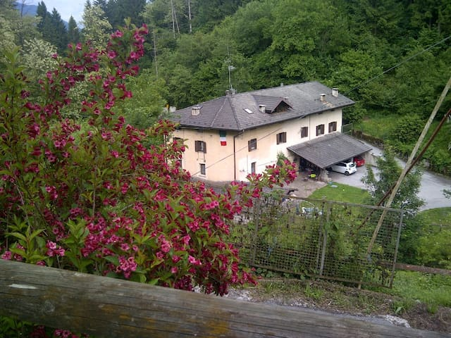 Appartamento in  Maso a mezza montagna in Trentino - Bosentino - Apartemen