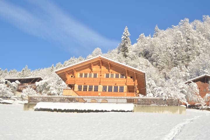 Sunny Swiss Chalet in the Bernese Oberland