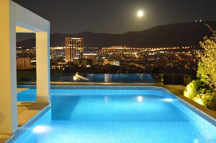 Vue panoramique, jardin de toit privatif, piscine