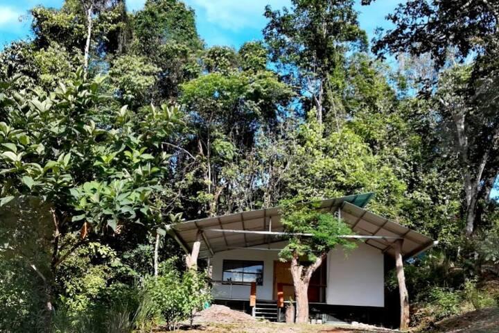 Casa Cascada, en bosque secundario y primario