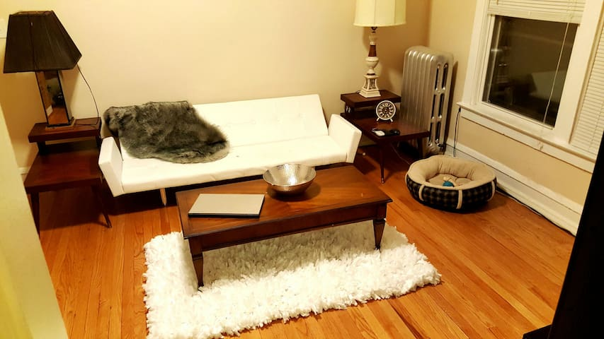 Warm Bedroom in a Nice Area! - Chicago - Apartment