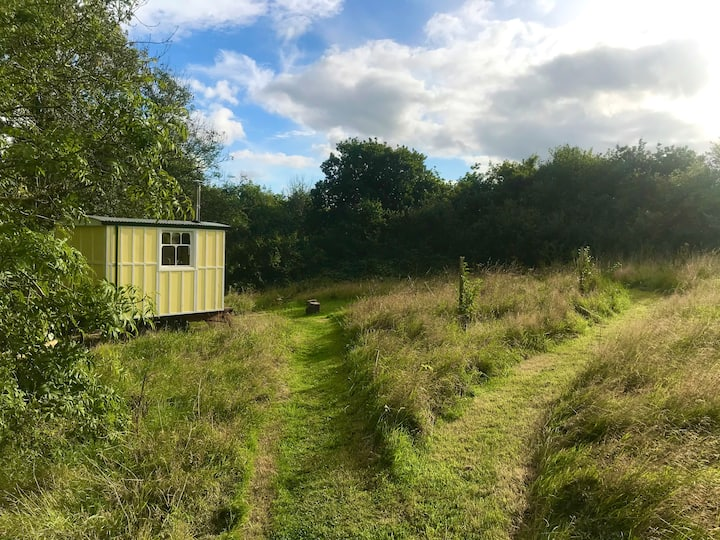 The Apple Wagon ~ a soulful eco-stay near Totnes