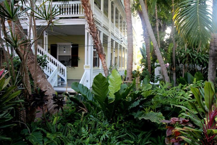 The Island Suite 16 has one of the premiere locations in Old Town, Key West with lively Duval Street just 3 blocks away and the neighborhood boasting some of the finest older homes in Key West.