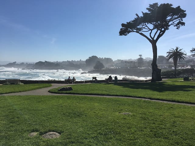 The lawn above Lovers Point Beach