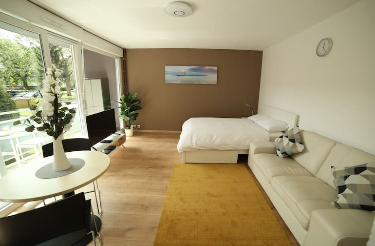 Modern bright studio apartment near Basel ★Netflix