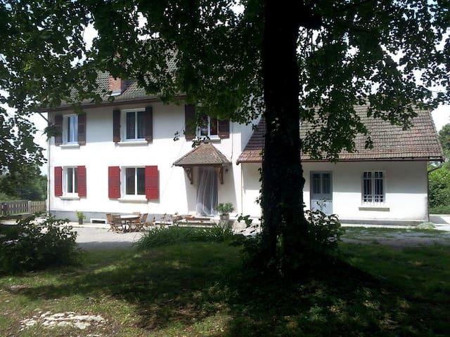 la maison depuis le parc