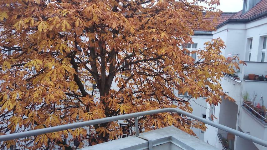 Gemütliche Wohnung / cosy flat central - Berlín - Apartamento