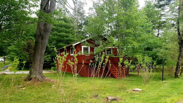 Cozy cabin in a wonderful Catskills community!