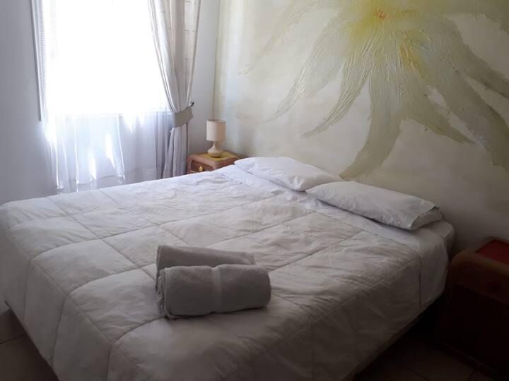 Habitaciones Montealegre 244
