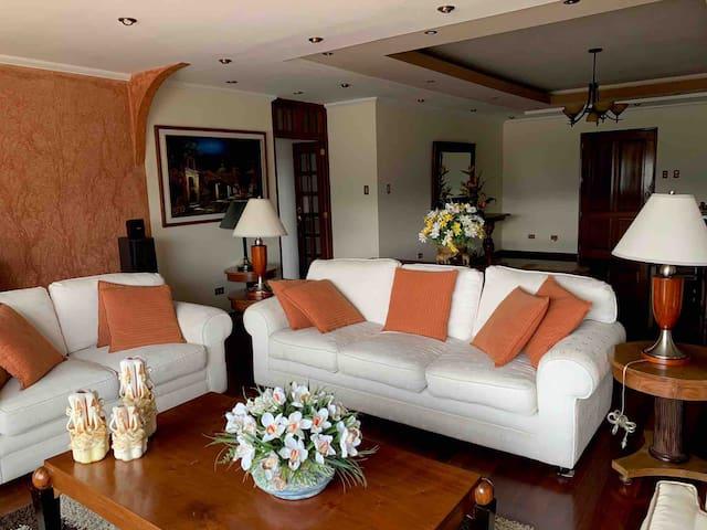 Luxury Penthouse Best zone