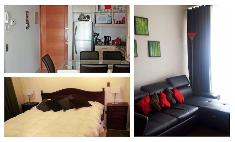 Espacios interiores, dormitorio principal + living y comedor / cocina