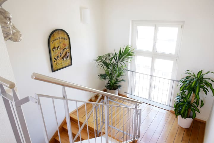 Volketswil switzerland airbnb solutioingenieria Choice Image