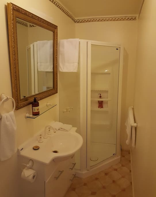 Music Room Ensuite Bathroom