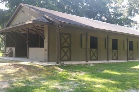 Wizard Farms Ocala Horse Stalls and Lodging - Ocala - Lainnya