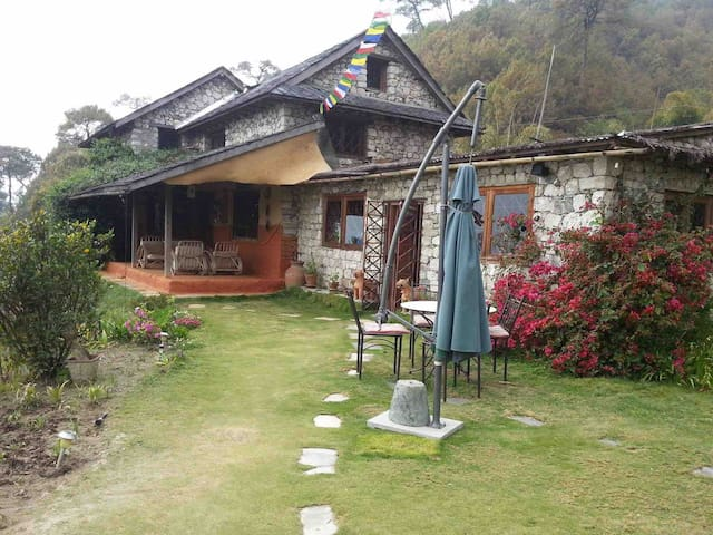 Gagan's guesthouse(An absolute gem) 3 more rooms available  For more details plz see with us