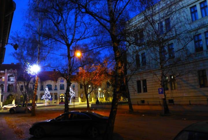 TOP apartm. in center of Osijek....
