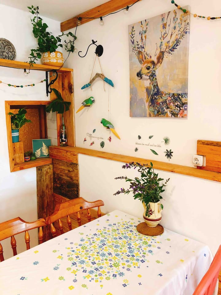 Cosy rustic flat with porche, 15 kms from beaches