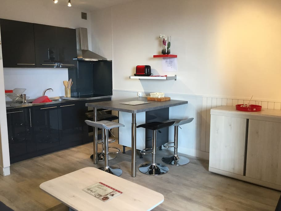 studio cabine enti rement r nov 4p apartments for rent. Black Bedroom Furniture Sets. Home Design Ideas