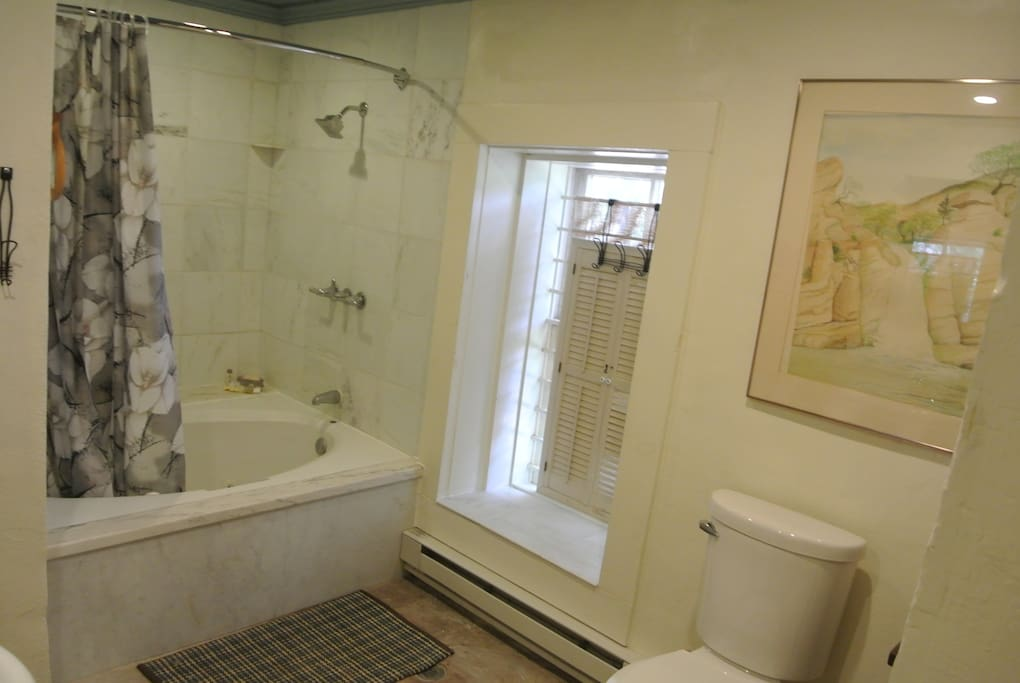 Another view of your marble bathroom with some local art work.