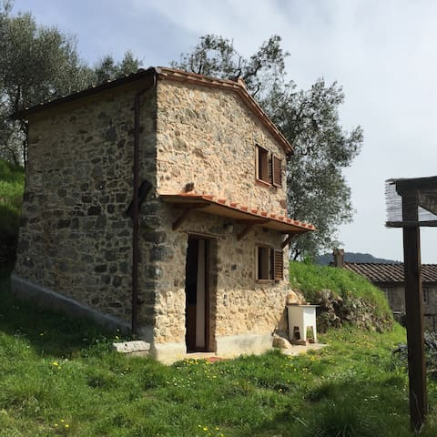 Rustico romantico nelle Seimiglia - Fibbiano