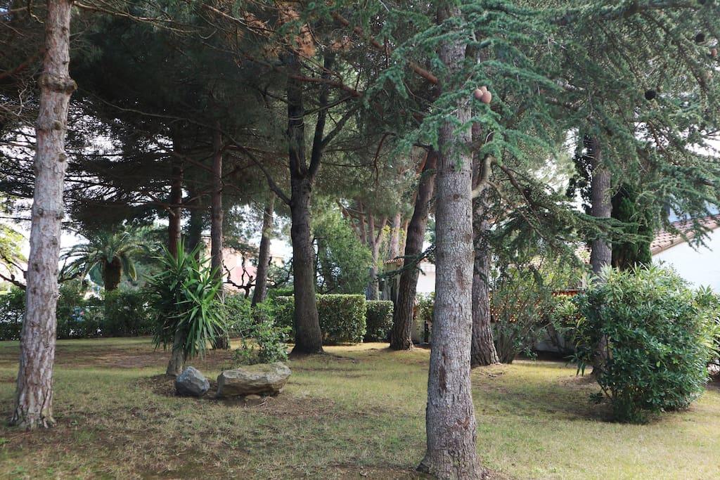 Parc face au jardin