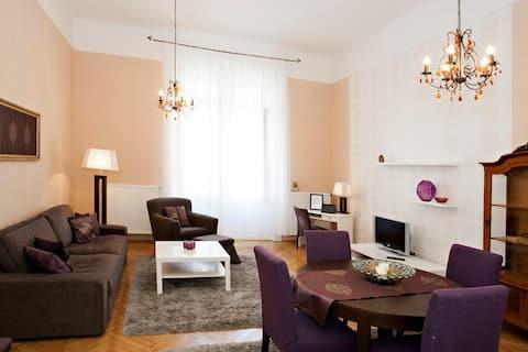 Classic Flat in downtown Budapest,free wifi,freeAC