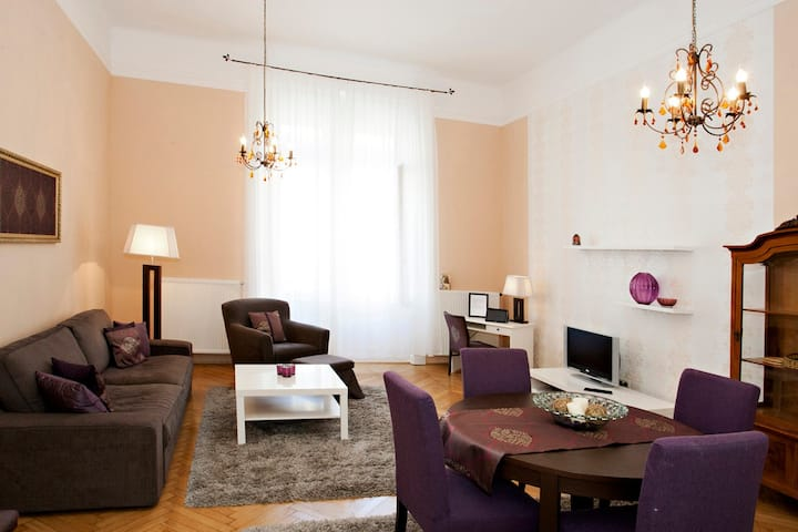 Classic Flat in downtown Budapest,free wifi,freeAC