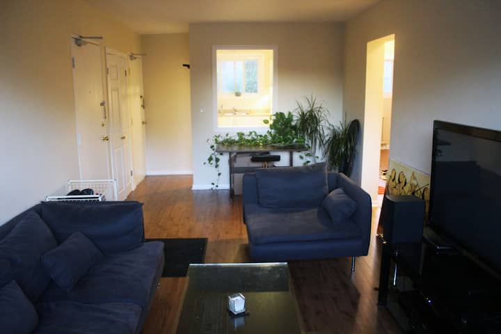 Private Room in Modern Flat in Downtown Kingston