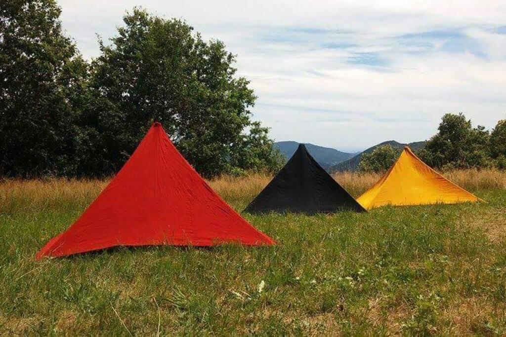 piramidi con colori vegetali per scoprire i segreti della Luce