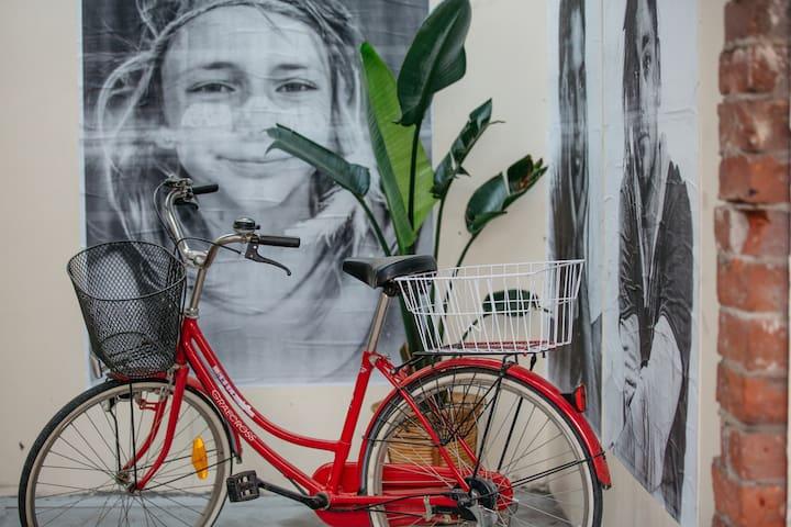 Local Artist Aldona Kmeic's Street Art series