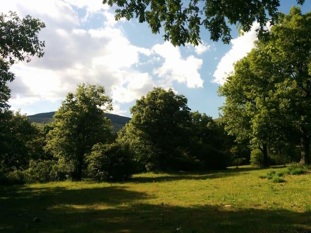 Puedes visitar lugares mágicos, en los montes de Braojos, caminando desde el Pajar!