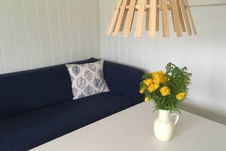 Lys, fin leilighet midt i Steigen!