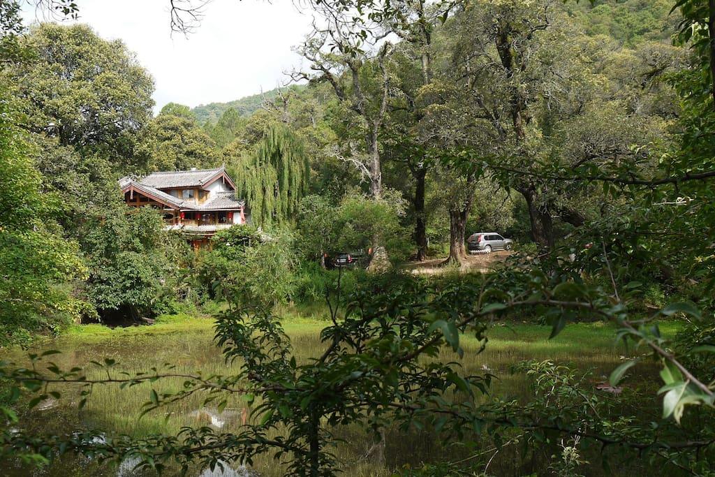 绿叶青葱树林环抱中的红山客栈,山清水秀民风朴实。