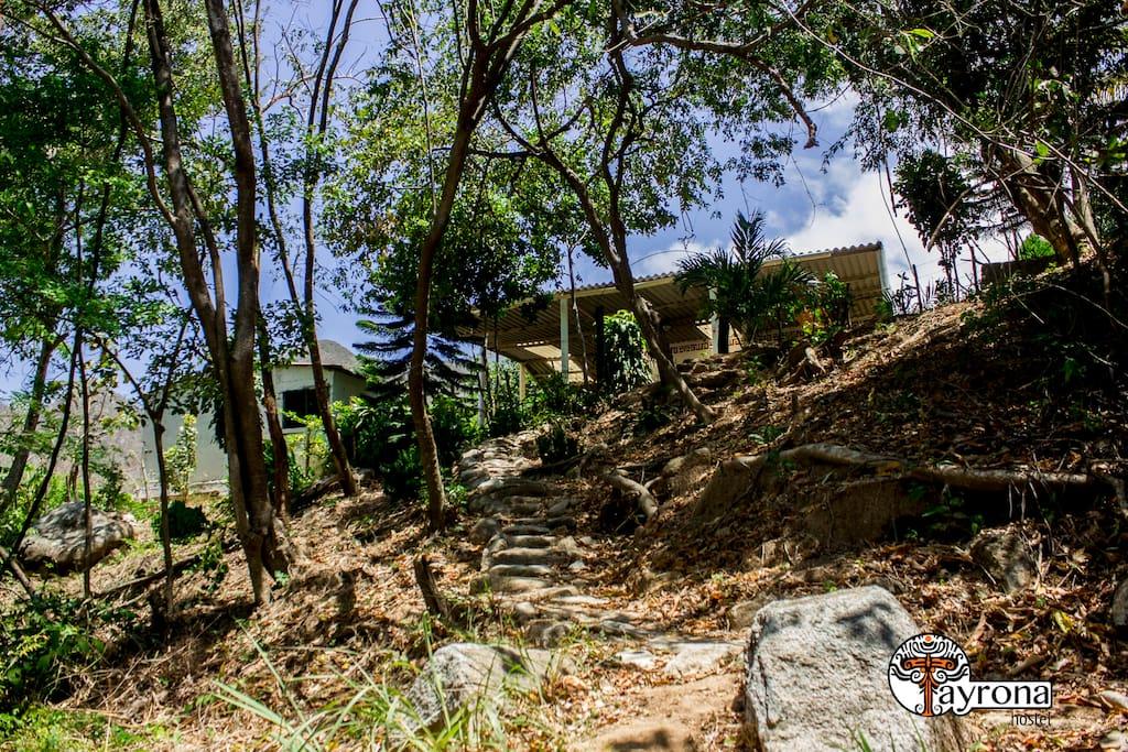 senderos ancestrales