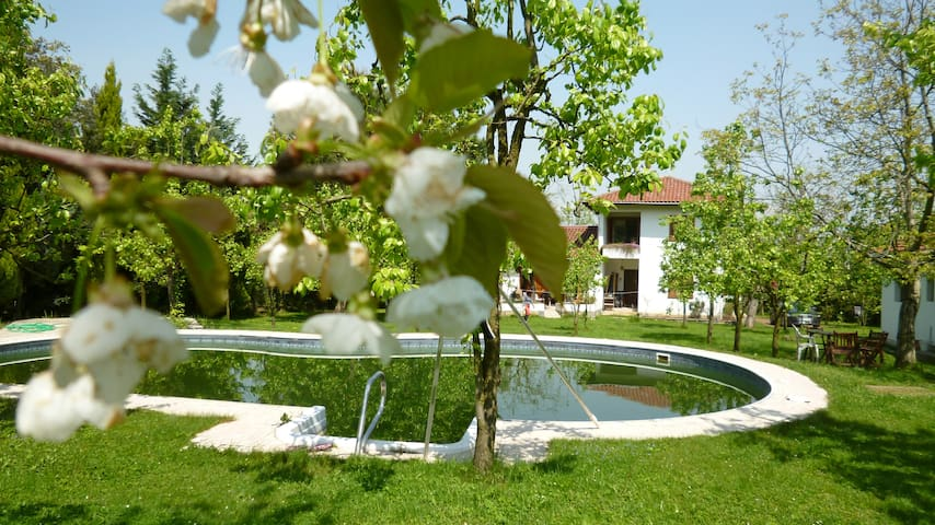 Villa with big private garden and private pool